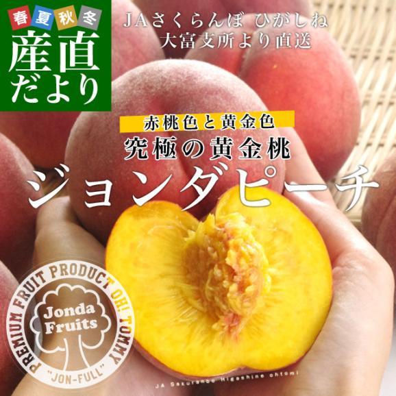 送料無料 山形県より産地直送 JAさくらんぼひがしね 大富支所 究極の黄金桃 ジョンダピーチ 約3キロ (9玉から12玉) 桃 モモ もも02