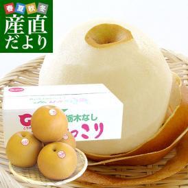 栃木県より産地直送 JAはが野 にっこり梨 大玉 5キロ (4玉から5玉)送料無料 優品以上 なし 梨 ナシ