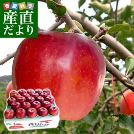 送料無料 岩手県より産地直送 JAいわて中央 特別栽培りんご 紅玉 5キロ(20玉から25玉) こうぎょく 林檎 リンゴ