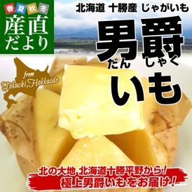 北海道より産地直送 北海道十勝産 じゃがいも男爵 Mサイズ以上 約3キロ だんしゃく