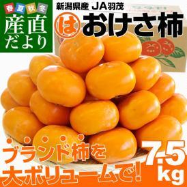 送料無料 新潟県産 JA羽茂(はもち) おけさ柿 Lから2Lサイズ 約7.5キロ(32から36玉) 市場発送