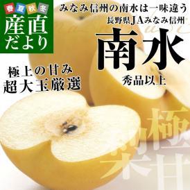 長野県産 南水梨(なんすいなし) 超大玉(10-12玉) 約5キロ 市場発送