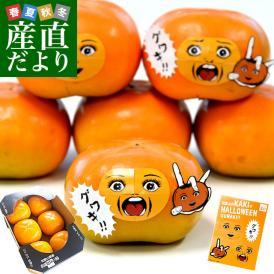 お一人様3箱まで 和歌山県より産地直送 JA紀の里 たねなし柿 3Lサイズ 6玉化粧箱(約1.5キロ )カキ かき 柿