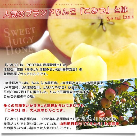 青森県より産地直送 JA津軽みらい 蜜入りりんご「こみつ」 秀品 2キロ (8玉から11玉) 送料無料 林檎 りんご04