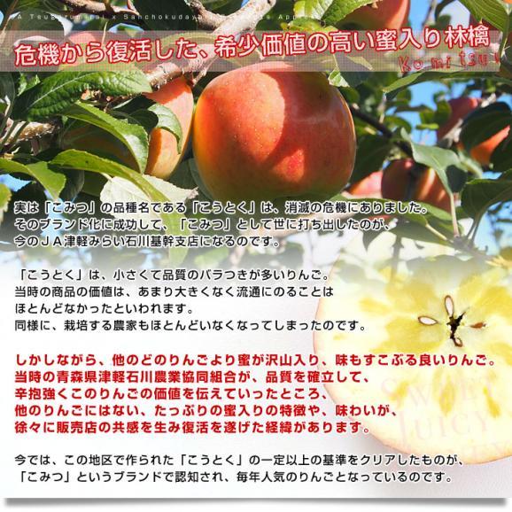 青森県より産地直送 JA津軽みらい 蜜入りりんご「こみつ」 秀品 2キロ (8玉から11玉) 送料無料 林檎 りんご05