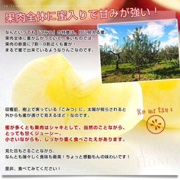 送料無料 青森県より産地直送 JA津軽みらい 蜜入りりんご「こみつ」 秀品 2キロ(8玉から11玉)  林檎 りんご06