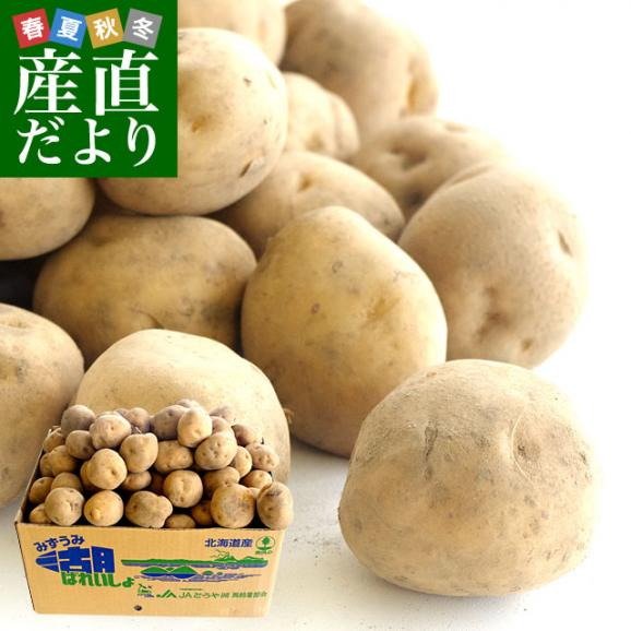 北海道より産地直送 JAとうや湖 じゃがいも 湖ばれいしょ「男爵」 Mサイズ 10キロ 馬鈴薯 ジャガイモ  送料無料01