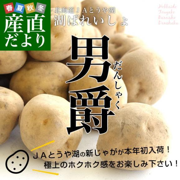 北海道より産地直送 JAとうや湖 じゃがいも 湖ばれいしょ「男爵」 Mサイズ 10キロ 馬鈴薯 ジャガイモ  送料無料02