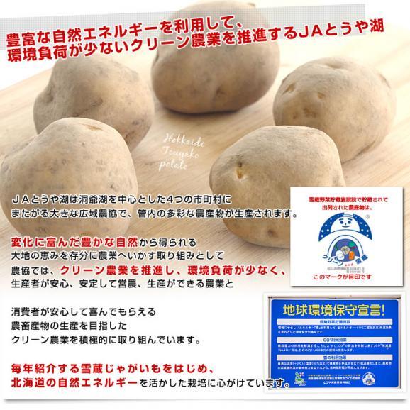 北海道より産地直送 JAとうや湖 じゃがいも 湖ばれいしょ「男爵」 Mサイズ 10キロ 馬鈴薯 ジャガイモ  送料無料06