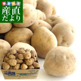 送料無料 北海道より産地直送 JAとうや湖 じゃがいも 湖ばれいしょ「男爵」 Lサイズ 10キロ 馬鈴薯 ジャガイモ