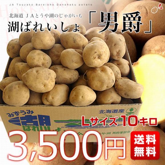 北海道より産地直送 JAとうや湖 じゃがいも 湖ばれいしょ「男爵」 Lサイズ 10キロ 馬鈴薯 ジャガイモ 送料無料03