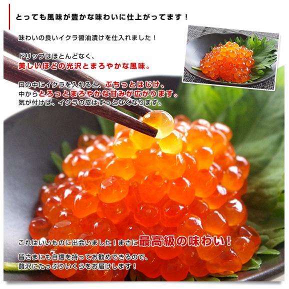 送料無料 北海道産 いくら醤油漬け 200g×2パック04