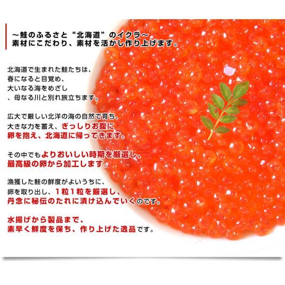 送料無料 北海道産 いくら醤油漬け 200g×2パック05