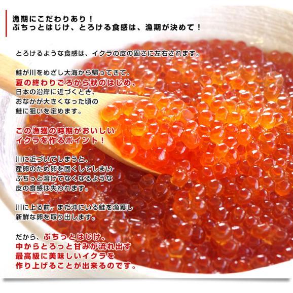 送料無料 北海道産 いくら醤油漬け 200g×2パック06