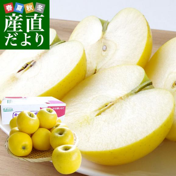 送料無料 岩手県より産地直送 JAいわて中央 こうこう 5キロ (14から20玉) 林檎 りんご リンゴ01