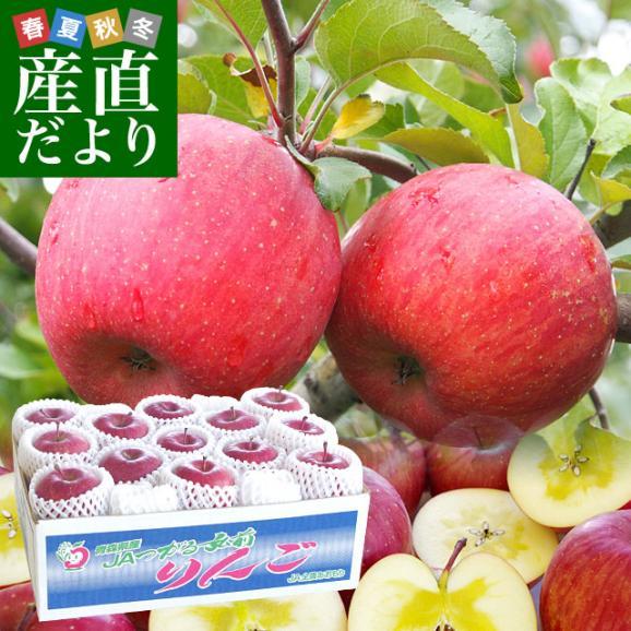 青森県より産地直送 JAつがる弘前 メジャー サンふじ 約3キロ(小玉13玉)送料無料 りんご 林檎01