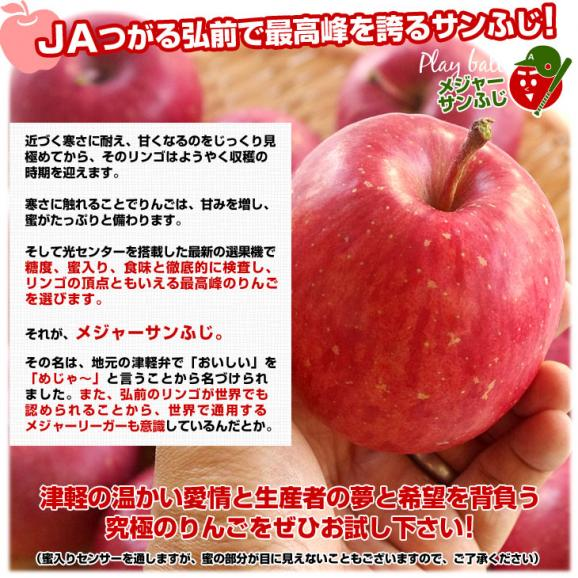 青森県より産地直送 JAつがる弘前 メジャー サンふじ 約3キロ(小玉13玉)送料無料 りんご 林檎05