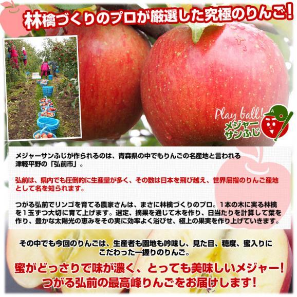 青森県より産地直送 JAつがる弘前 メジャー サンふじ 約3キロ(小玉13玉)送料無料 りんご 林檎06
