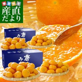 佐賀県より産地直送 JAからつ 小粒うまか美人 高糖度みかん Sから3Sサイズ  約2キロ×2箱  送料無料 U・M・K美人 蜜柑 温州ミカン