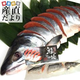 北海道から直送 山漬け寒風干し秋鮭 半身 姿切身 約1.3キロ 北海道サケ シャケ 秋鮭