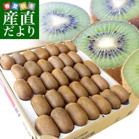 香川県より産地直送 JA香川県 キウイフルーツ 香緑(こうりょく)  約3キロ (20から35玉前後) 送料無料