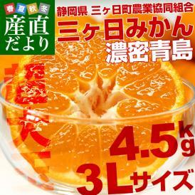 送料無料 静岡県産 JAみっかび  三ケ日みかん (濃密青島) 大玉 3Lサイズ 4.5キロ  ミカン 蜜柑 市場スポット