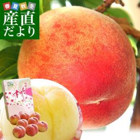 送料無料 和歌山県より産地直送 JA紀の里 紀の里の桃 特秀品 1.8キロ(6玉から8玉) 桃 もも