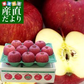 送料無料 青森県より産地直送 JA津軽みらい ふじりんご CA貯蔵品 3キロ(10玉) 林檎 リンゴ ※クール便