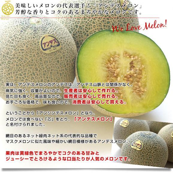 茨城県より産地直送 JA水戸ひぬま アンデスメロン 優品 4Lから2L 5キロ箱 (3玉から5玉) 送料無料 めろん04