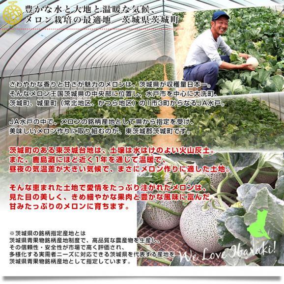 茨城県より産地直送 JA水戸ひぬま アンデスメロン 優品 4Lから2L 5キロ箱 (3玉から5玉) 送料無料 めろん05