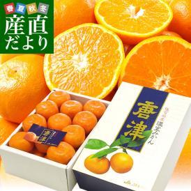 佐賀県より産地直送 JAからつ ハウスみかん 化粧箱 Sサイズ 秀品 約1.8キロ (約21玉) 送料無料 蜜柑 ミカン