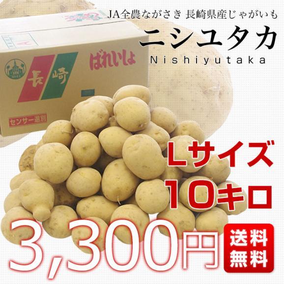 送料無料 長崎県産 JA全農ながさき じゃがいも(ニシユタカ) Lサイズ 10キロ 市場発送 馬鈴薯 ばれいしょ03