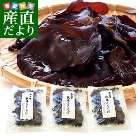 送料無料 島根県より産地直送 奥出雲キノコ 乾燥キクラゲ 50g×3袋