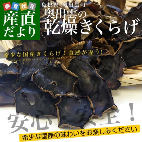 島根県より産地直送 奥出雲キノコ 乾燥キクラゲ 50g×3袋 送料無料02