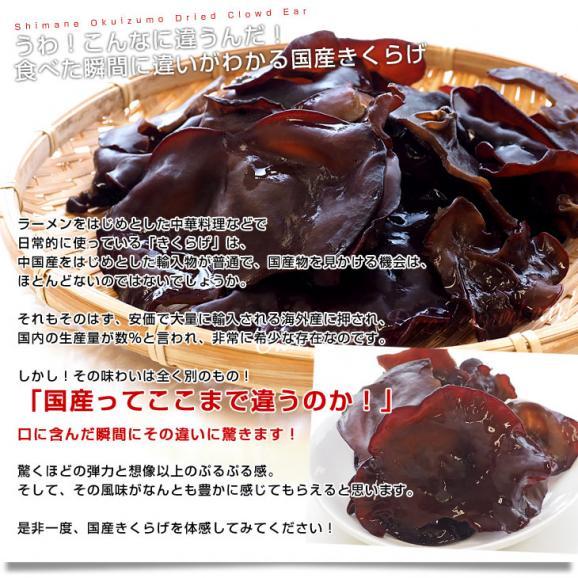 島根県より産地直送 奥出雲キノコ 乾燥キクラゲ 50g×3袋 送料無料05