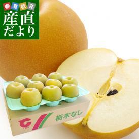 送料無料 栃木県より産地直送 JAはが野の梨 (大玉限定) 優品以上 約5キロ (8玉から10玉) なし ナシ