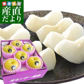 送料無料 栃木県より産地直送 JAはが野 高糖度梨「しんか」糖度13度以上 幸水梨または、豊水梨 約2.2キロ (6玉入) なし ナシ