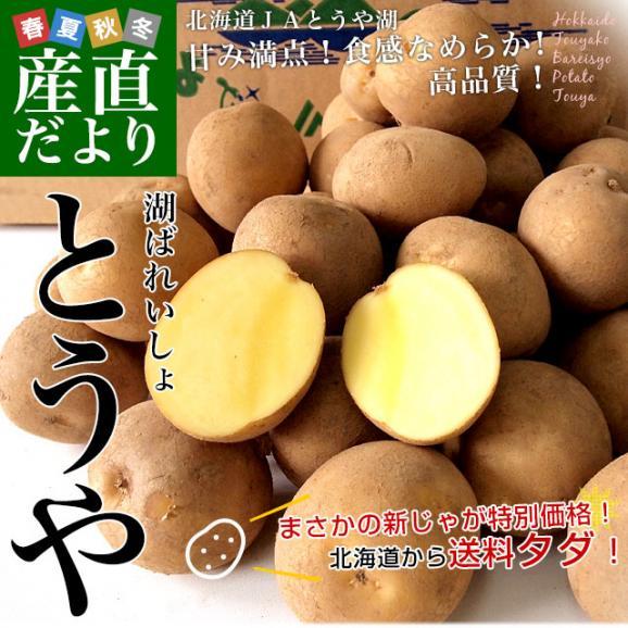 送料無料 北海道から産地直送 JAとうや湖 じゃがいも 湖ばれいしょ「とうや」 Lサイズ 10キロ 馬鈴薯 ジャガイモ02