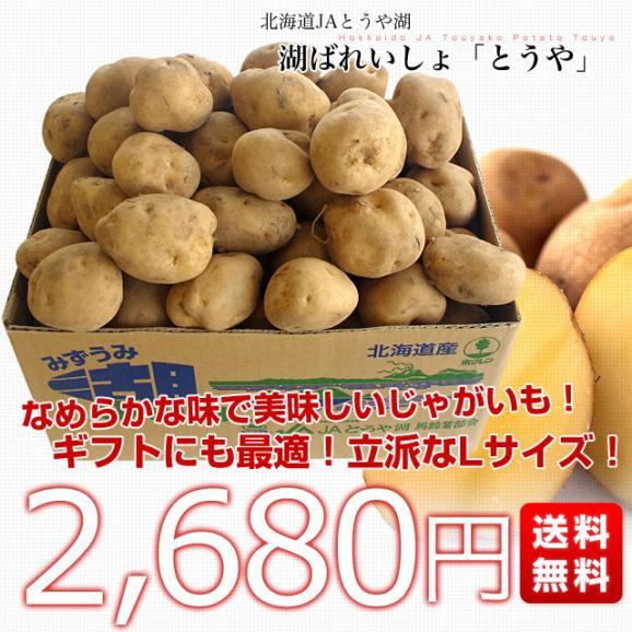 送料無料 北海道から産地直送 JAとうや湖 じゃがいも 湖ばれいしょ「とうや」 Lサイズ 10キロ 馬鈴薯 ジャガイモ03