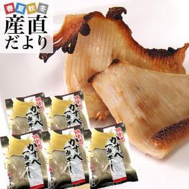 送料無料  北海道から直送 北海道産 一夜干しカスベ (エイヒレ) 約400g×5袋セット