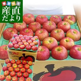 長野県より産地直送 JAながの 飯綱地区 シナノスイート 秀品 10キロ (36玉から46玉) 送料無料 林檎 りんご リンゴ