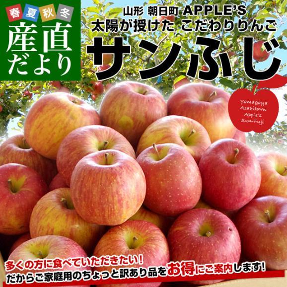 送料無料 山形県より産地直送 山形朝日町APPLE'S サンふじりんご 約9から10キロ 林檎 リンゴ02