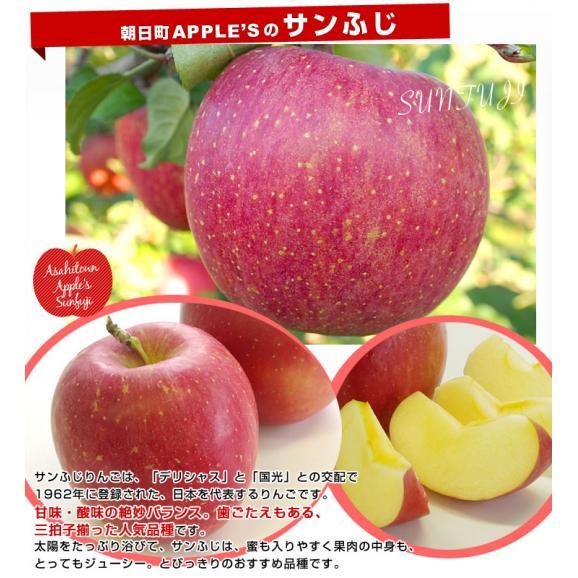 山形県より産地直送 山形朝日町APPLE'S サンふじりんご 9キロから10キロ 林檎 リンゴ 送料無料04
