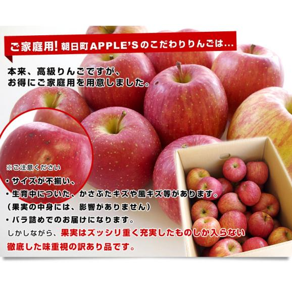 送料無料 山形県より産地直送 山形朝日町APPLE'S サンふじりんご 約9から10キロ 林檎 リンゴ05