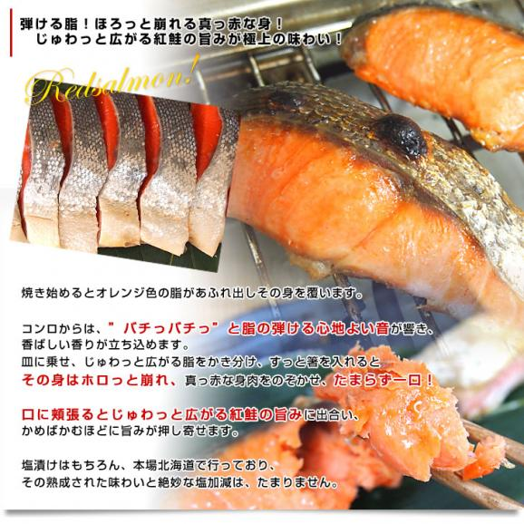 送料無料 北海道加工 天然紅鮭 <中辛> 1尾姿切り身 約1.6キロ ロシア産05