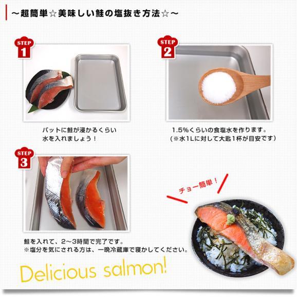 送料無料 北海道加工 天然紅鮭 <中辛> 1尾姿切り身 約1.6キロ ロシア産06