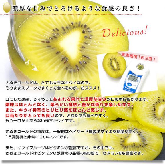香川県より産地直送 JA香川県 キウイフルーツ さぬきゴールド ご家庭用 1キロ(4玉から8玉) 送料無料 キウィ05