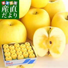 岩手県より産地直送 JA全農いわて いわて純情りんご 純情はるか 5キロ ご家庭用冬恋 (16玉から25玉) 林檎 りんご リンゴ