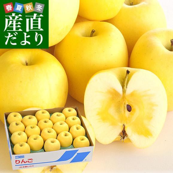 送料無料 岩手県より産地直送 JA全農いわて いわて純情りんご 純情はるか 5キロ ご家庭用冬恋 (16から25玉) 林檎 りんご リンゴ01