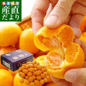 佐賀県より産地直送 JAからつ 高糖度特秀みかん オンリーワン(OnlyOne)送料無料 約5キロ (60から80玉) 蜜柑 ミカン